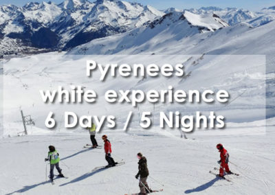 Pyrenees white experience